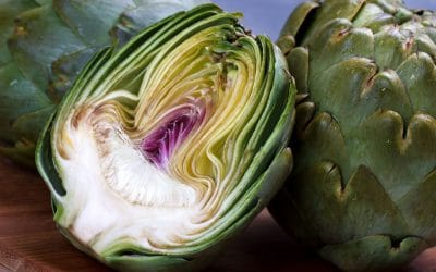 Artichoke: an exquisite flower bud on your plate!