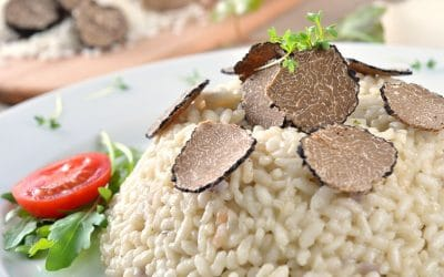 What is Truffle, the most prestigious food in the world!
